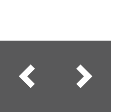 Bear Wear Fridays