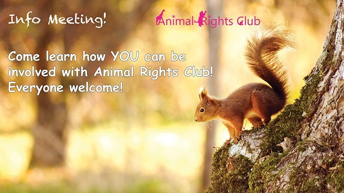 Animal Rights Club Bi-Weekly Informational Meetings