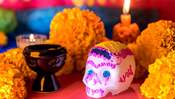 4th Annual Day of the Dead Festival