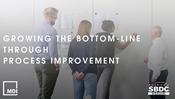 Growing the Bottom-Line through Process Improvement