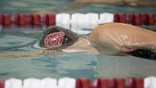 Missouri State University Swimming and Diving vs MVC Women's Championships
