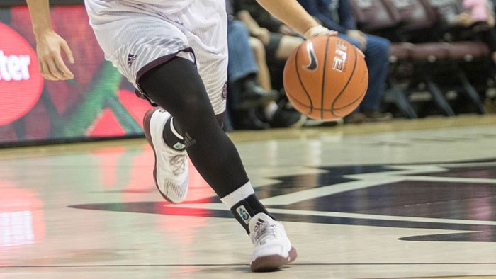 Missouri State University Women's Basketball at Southern Illinois
